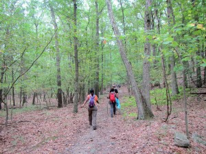 6 Reasons You Must Hike Georgia Trails With Your Fam