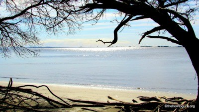 view of Jekyll Island secluded beach