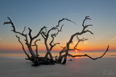 view of Jekyll Island sunset on Jekyll Driftwood Beach