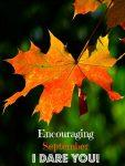 Encouraging