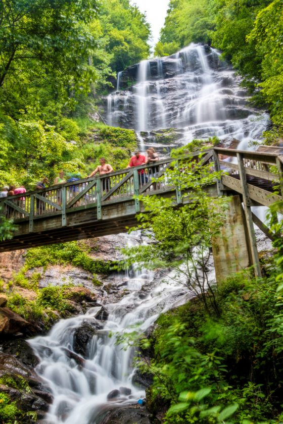 her ULTIMATE list for 5 family friendly things to do in Georgia this year that you can't miss!