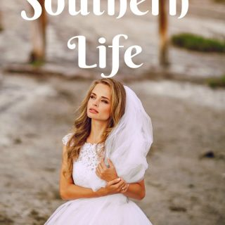 Secret Southern Life book cover