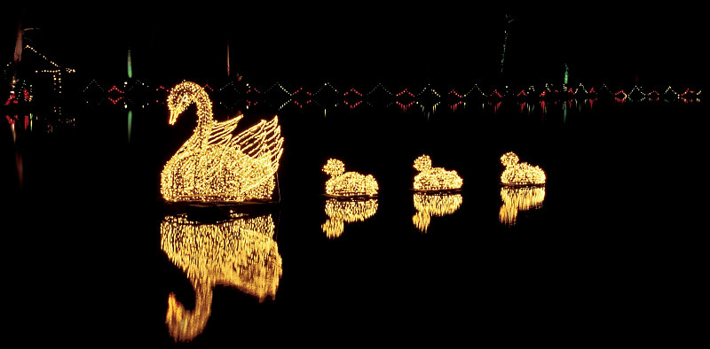 Drive through christmas lights that are filling hearts - Callaway gardens festival of lights ...