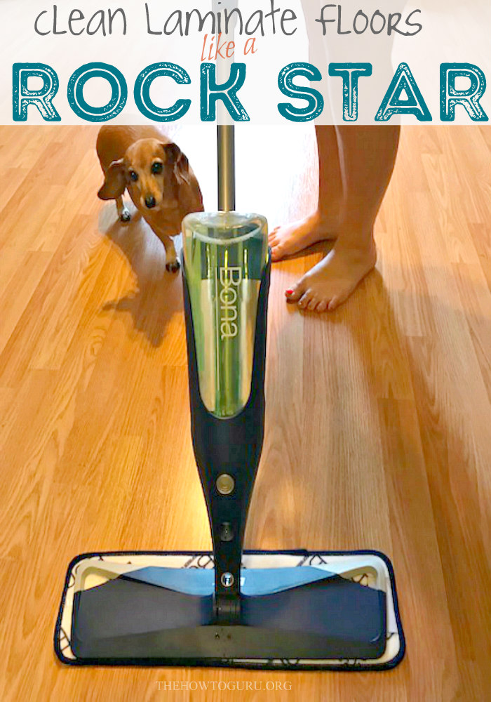 close up of floor, mop and dog in How to clean laminate floors like a boss