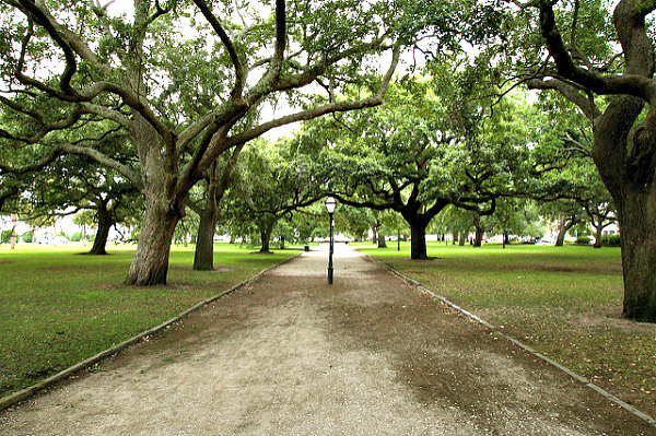 6 Exciting Charleston SC attractions with teens & older kids - Charleston Park