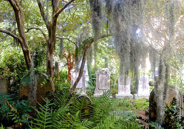6 Exciting Charleston SC attractions with teens & older kids - Charleston cemetery