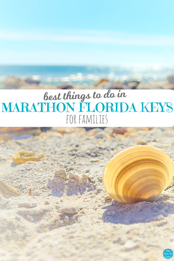 view of beach sand, shells, and ocean - things to do in Marathon, Florida Keys with families