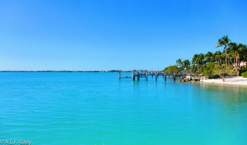 4 Best things to do in Marathon Florida - View of the ocean and boat dock and palm trees