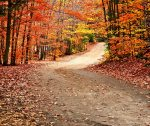 the best weekend getaways are for fall foliage overload, dreamy drives, and fairy tale hiking trails
