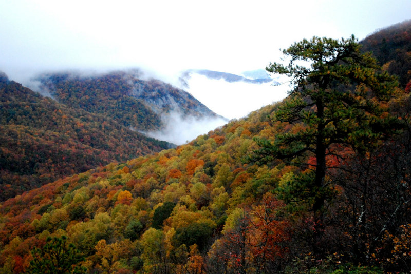 Best Weekend Getaways for fall foliage overload, dreamy drives, & fairy tale hiking trails - South Carolina Mountain