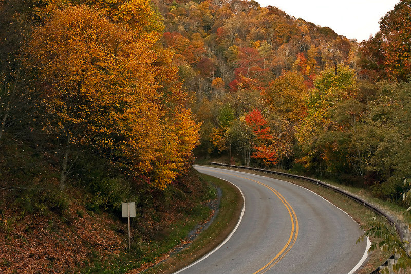 image of Tennessee fall foliage for best places to travel in October