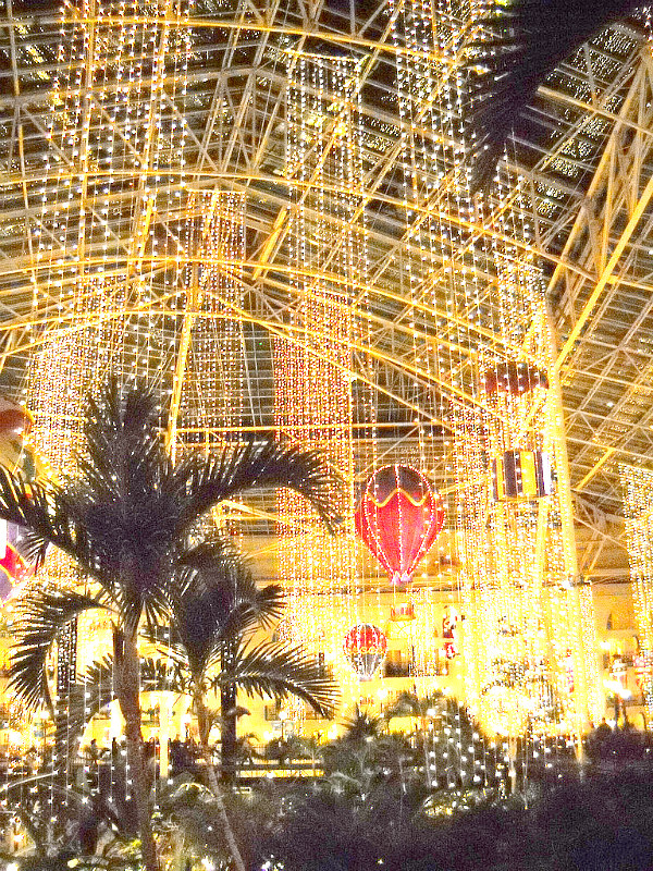 view of Opryland Tennessee as one of best places to go in the southern states