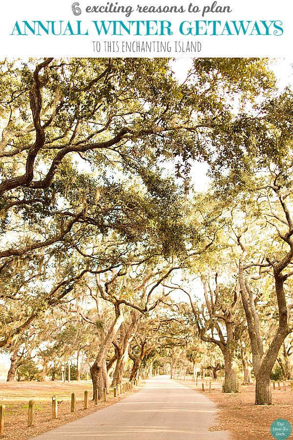 view of Jekyll Island path of canopied oak trees