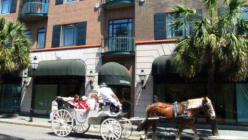 view of Charleston South Carolina Carriage ride