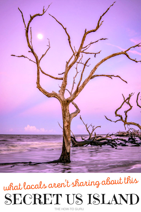 Jekyll Island driftwood upright in ocean with purple and blue sky background