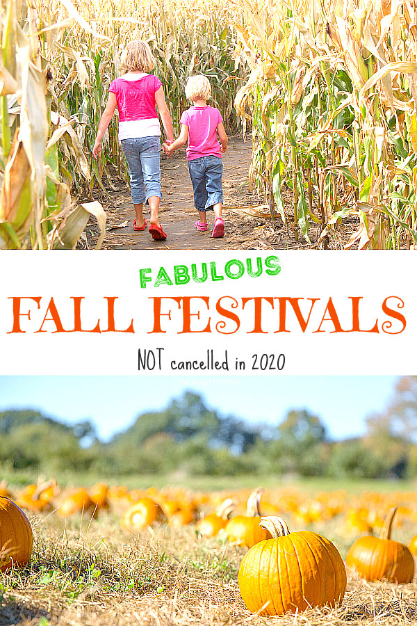 Fall festival corn maze with two young girls holding hands and pumpkin patch with orange pumpkins