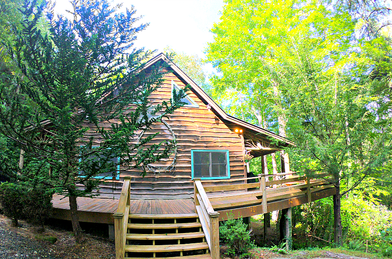 Brown North Georgia Cabin Rental surrounded by green trees and steps.
